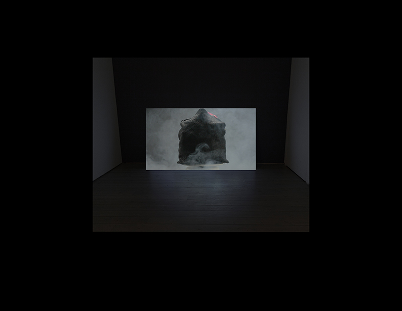 Robert Arndt, Pursuit, Plunder & Fleece, 2011-15, single chanel video projection