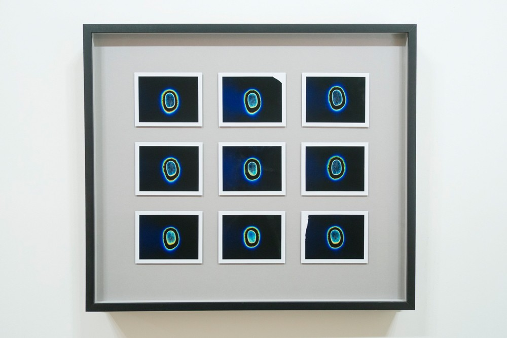 "Transcendental Capacities (Acid House, 1988 - 1992), 9 Kirlian Polaroids 18"" x 18"" (47cm x 47cm), Unique, 2013"