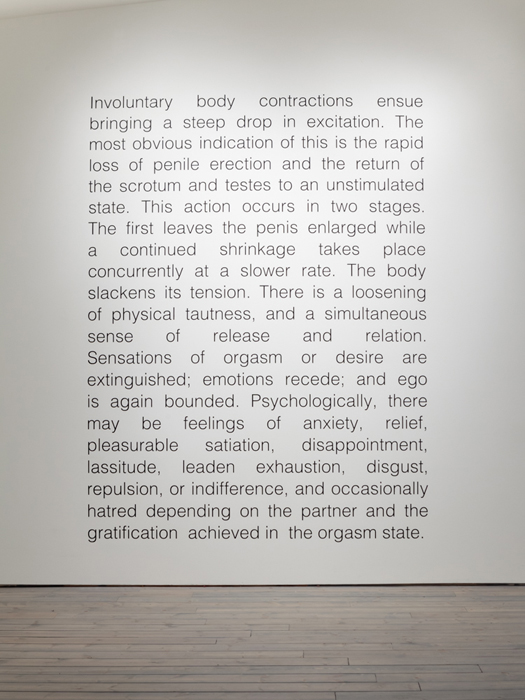 Dan Graham, Detumescence, 1966/94 Black paint applied directly to wall surface, Edition of 10. Photo credit: Barb Choit