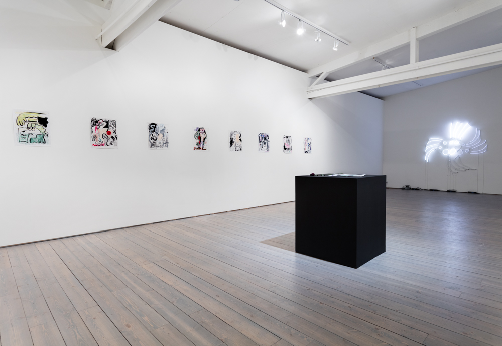 Walter Scott A Small Metal Crow with Wings on the Way 2017 Installation view Exhibition